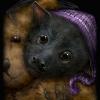 Baby Bat\'s Bedtime