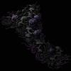 Vampire Skulls & Roses