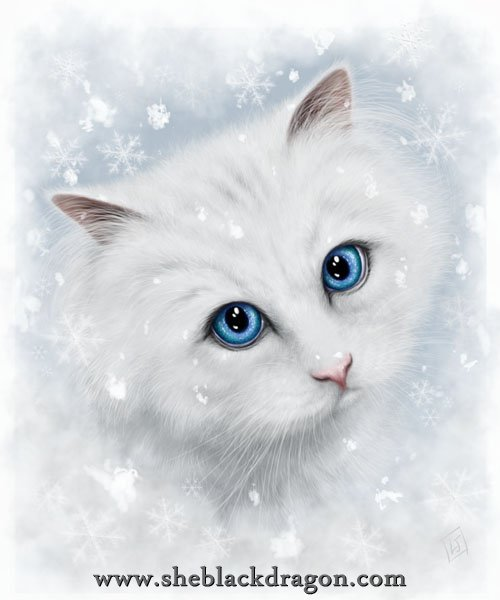 Winter Cat (alternate)