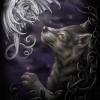Mystical Encounter