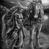 Dutiful Paladin & War-Unicorn